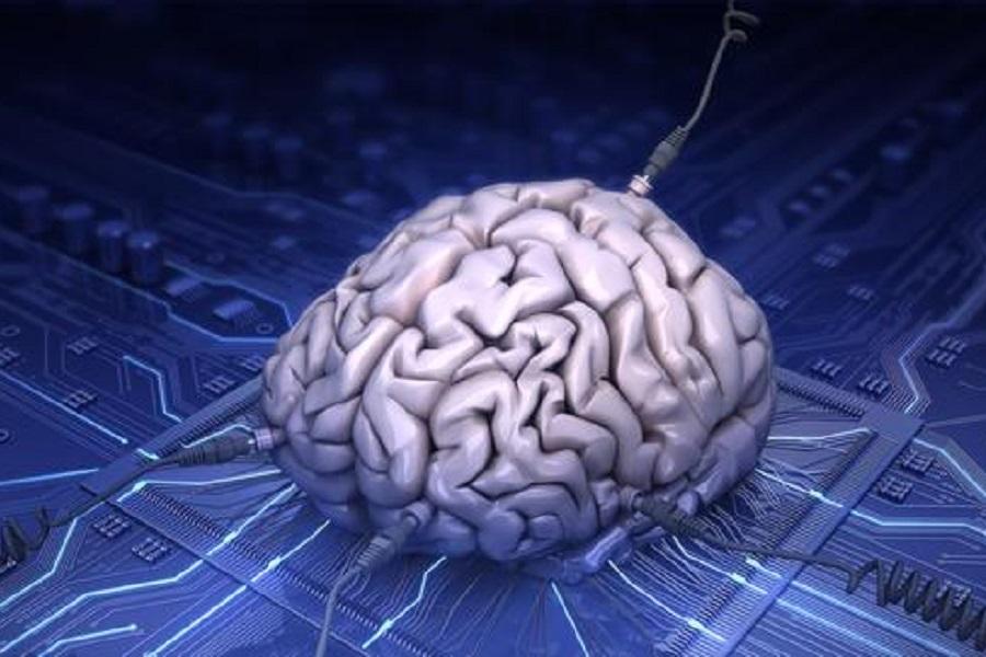 人工智能,AI,人工智能,网络安全,生态系统,自动化